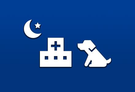 夜間を含む診療時間外の緊急診療について:枚方市の山之上動物病院です。