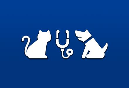 ワンちゃん猫ちゃん年に一度は健康診断を!:枚方市の山之上動物病院です。